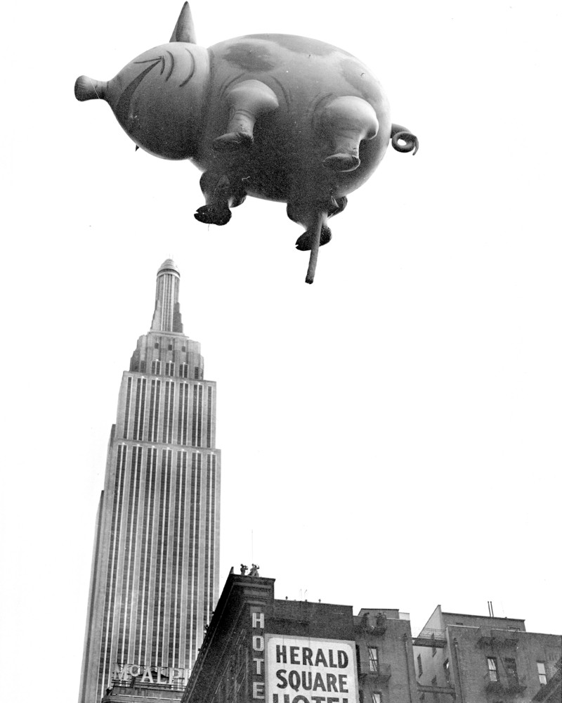 Hes Coming From The 1932 Macys Thanksgiving Day Parade And Dont Let That Perspective Fool You Mr Pig Is Not Really Over Empire State Building