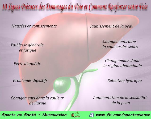 10 Signes Précoces des Dommages du Foie et Comment Renforcer votre Foie
