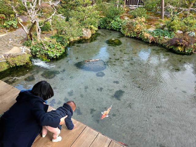 湧水庭園「四明荘」島原市