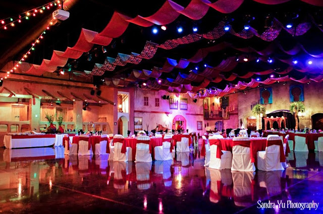 Wedding Venues In Tampa Fl Tampa's Lowry Park Zoo wedding