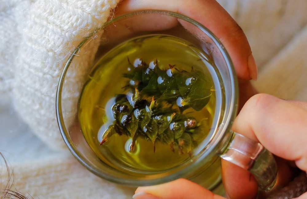 Teh Hijau (womenshealthmag.com)