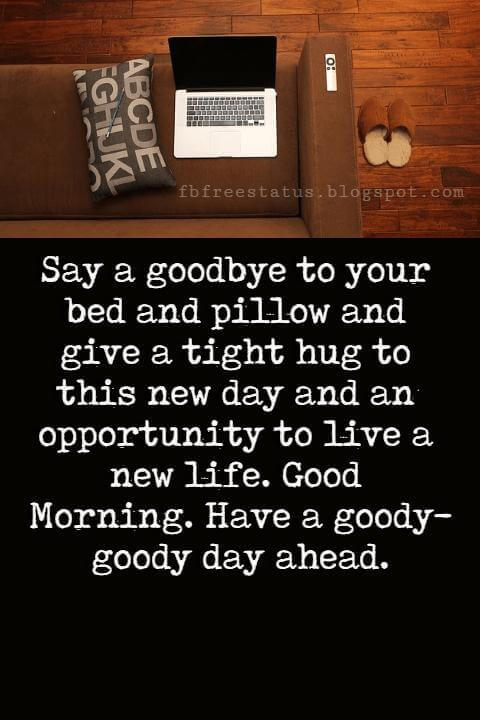 Good Morning Text Messages, Say a goodbye to your bed and pillow and give a tight hug to this new day and an opportunity to live a new life. Good Morning. Have a goody-goody day ahead.