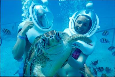 caribbean scuba diving holidays
