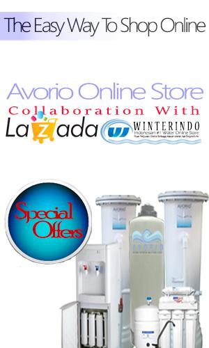 online Store Avorio