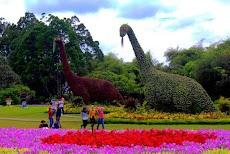 [Foto] Ada Dinosaurus di Taman Bunga Nusantara