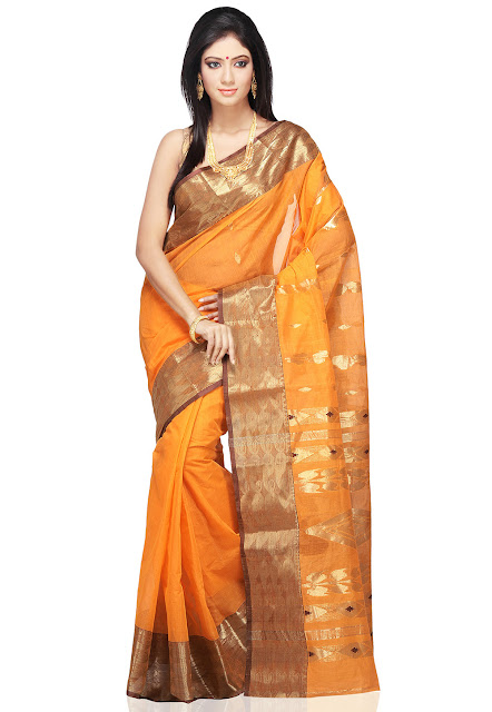 Traditional Indian / Nivi Saree Style