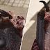 (Video) Tergigit ekor tikus dalam aiskrim, pengguna tuntut pampasan RM31,000