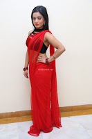 Aasma Syed in Red Saree Sleeveless Black Choli Spicy Pics ~  Exclusive Celebrities Galleries 045.jpg