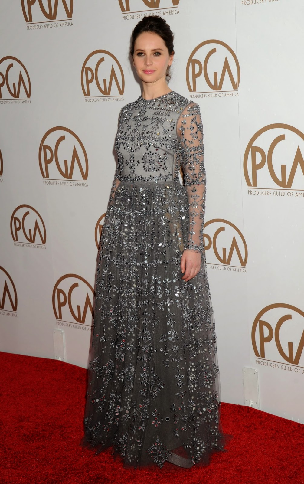 Felicity Jones in a Valentino gown at the 2015 Producers Guild of America Awards in LA