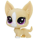 Littlest Pet Shop Series 2 Mini Pack Mayor Perrito (#2-87) Pet
