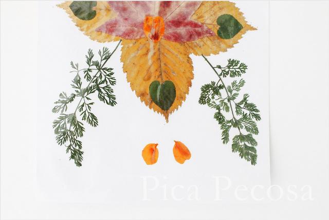 como-hacer-tarjeta-con-hojas-secas-de-otoño-diy-08