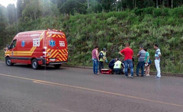 Motociclista bate em animal na SC 135 em Porto União