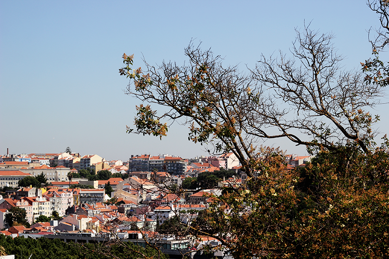 Lisbon Photodiary #3