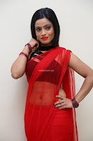 Aasma Syed in Red Saree Sleeveless Black Choli Spicy Pics ~  Exclusive Celebrities Galleries 098.jpg