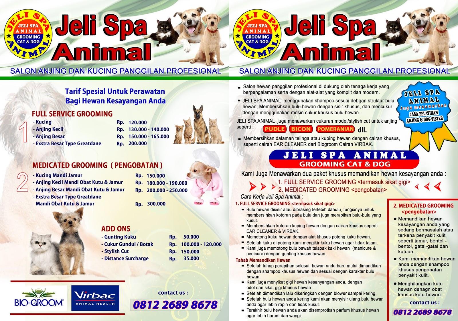 Jeli Spa Animal Salon Anjing Kucing Panggilan Tambunbekasijakarta Sisir Kutu Hewan Dog Models