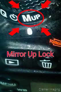 Graphic of where you might find the mirror up lock on your camera by Cramer Imaging