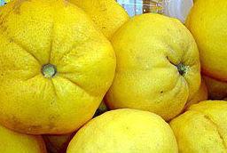 Limones Cascarúos de Málaga