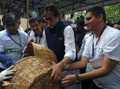 Amithab at jj hospital Maha Cleanathon-thumbnail-7