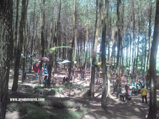 Spot I Love U di Hutan Pinus Precet
