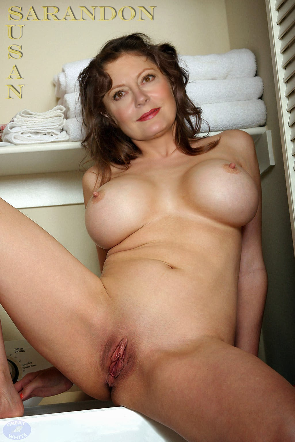 Susan Sarandon Fake Nudes