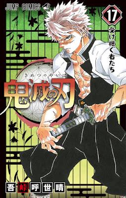 Capa do Volume 17 mangá