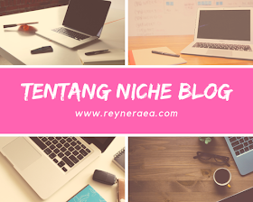 tentang niche atau tema blog