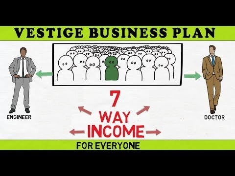 Business Plan Of Vestige Vestige