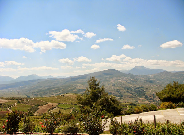 View from Semeli Winery