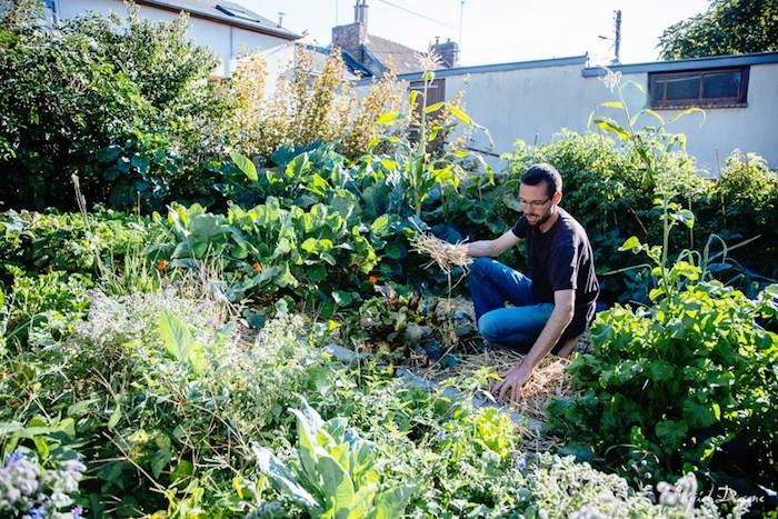 Il cultive un jardin urbain et a r colt 300 kg de l gumes for Wavre jardin urbain 2015