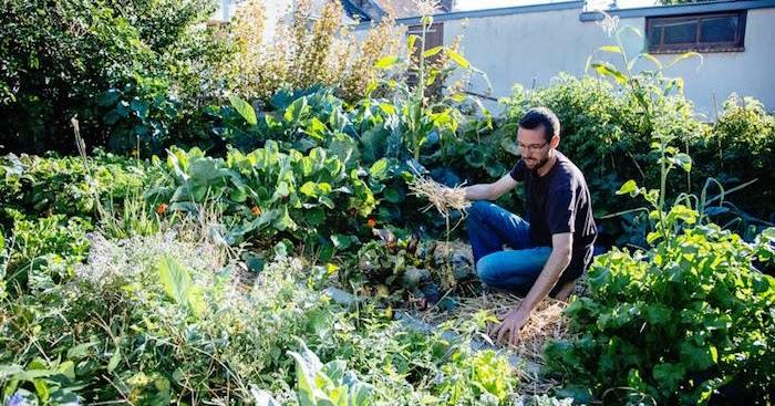 Jardin Urbain Permaculture Of Alalumieredunouveaumonde Il Cultive Un Jardin Urbain Et A