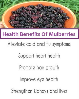 Mulberry Health Benefits, Mulberry Nutrition, Benefits Of Mulberries, Health Benefits Of Mulberries, Mulberries Health Benefits, What Are The Benefits Of Mulberries, What Are The Health Benefits Of Mulberries, Nutritional Value Of Mulberries