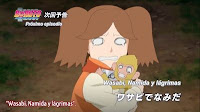 Boruto: Naruto Next Generations Capitulo 49 Sub Español HD