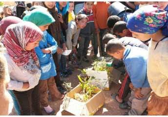 """""""نادي البيئة و التنمية المستدامة لمجموعة مدارس اكوتي باغيل نومكون آلية لخلق فضاء بيئي بإسهام فاعل للمتعلمين و المتعلمات"""""""