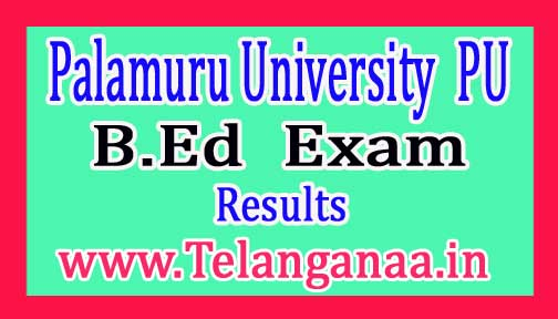 PU B.Ed 1st Sem Improvement & Supply Exam Results 2017