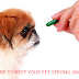 PET MEDICINE TO KEEP YOUR PET STRONG AND HEALTHY