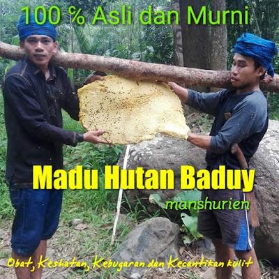 madu hutan asli sumbawa