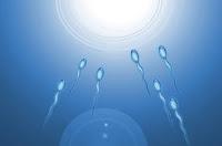semen enhancement pills
