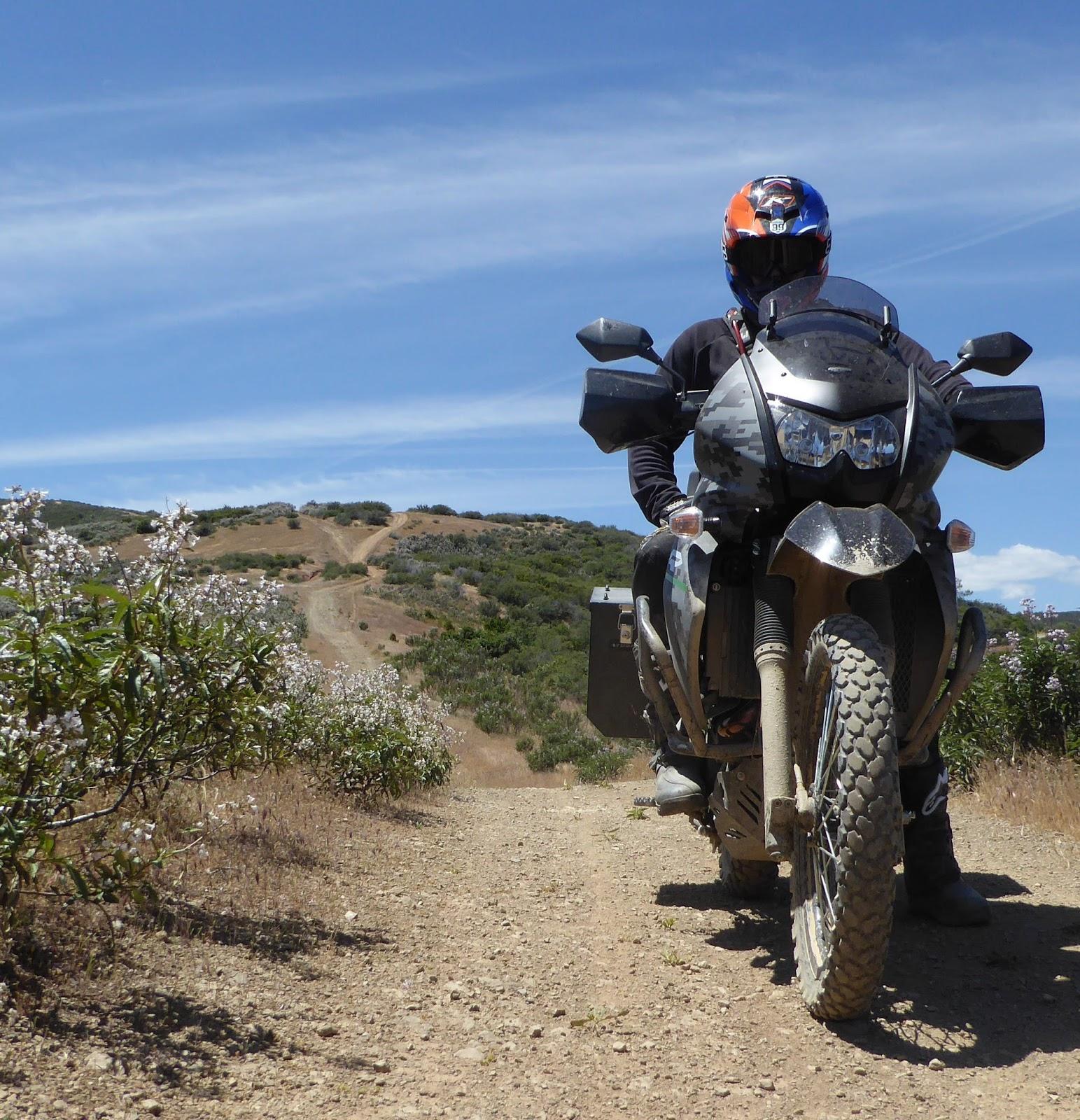 Official Quiet Warrior Racing Blog Kawasaki Klr 650 Camo