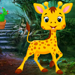 G4K Cute Giraffe Rescue G…