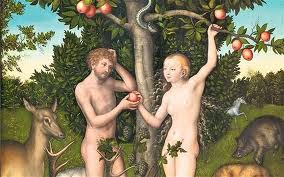 Adam and Eve ate an apple? Just another historical misconception.