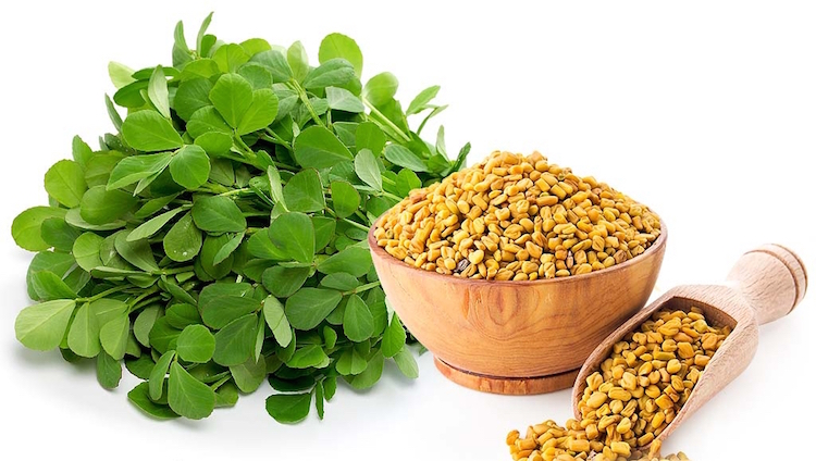 Fenugreek  | The Girls Beauty Bible