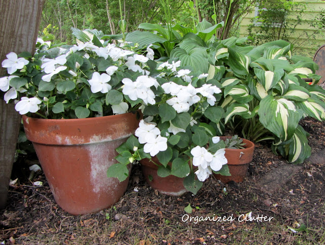 Terra Cotta Pot Garden Edging