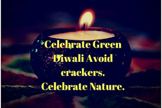 Eco-Friendly Diwali Short Slogans