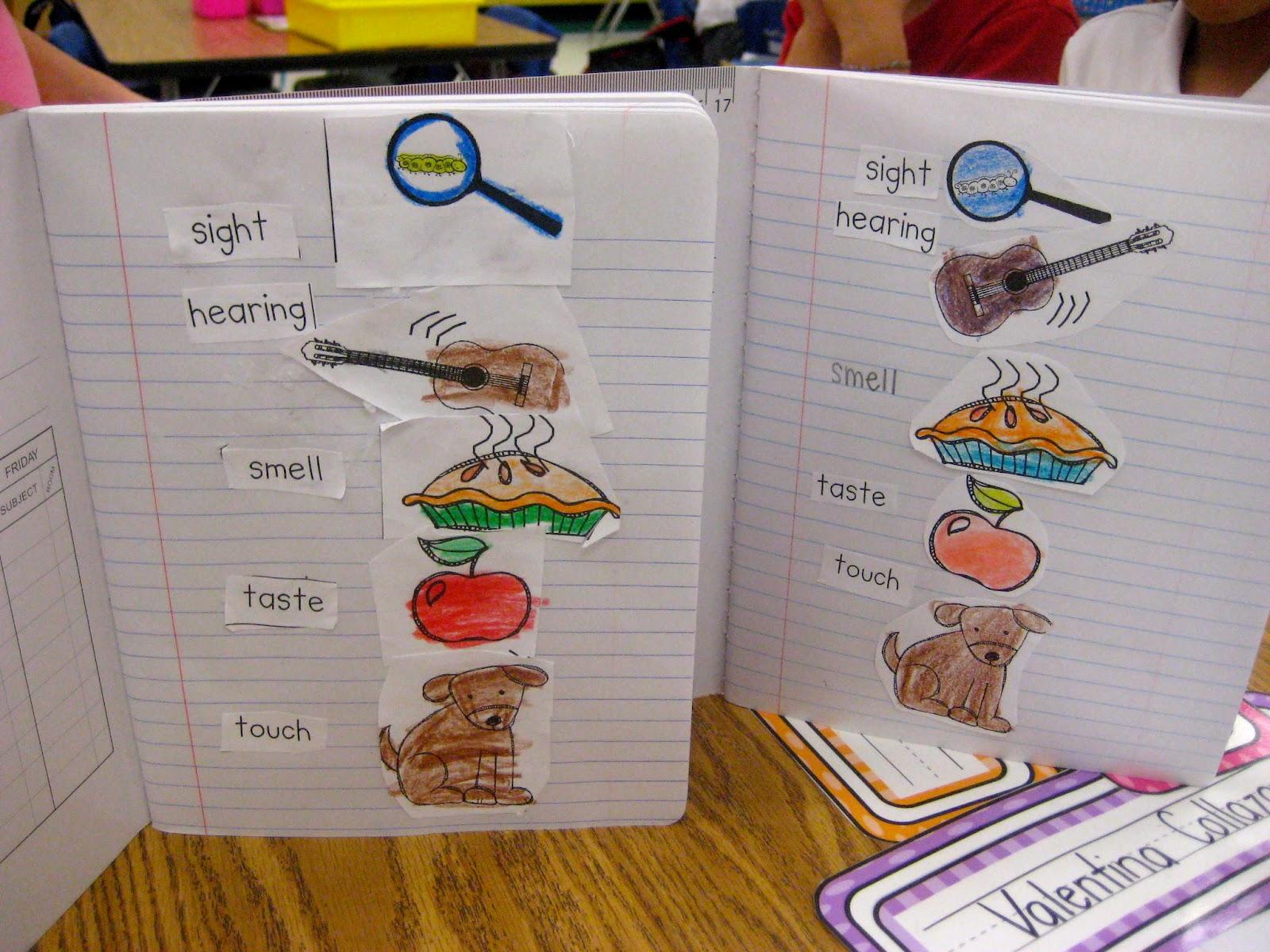 Five Senses on Pre K Kindergarten First And Second Grade Ideas