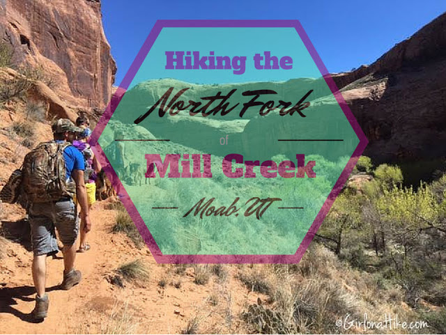 7 Best Dog Friendly Trails in Moab, Utah, North Fork of Mill Creek Moab