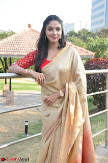 Angana Roy in Silk Saree at Teaching Tree Carnival .xyz 008.JPG