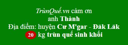Trùn quế về huyện Cư M'gar