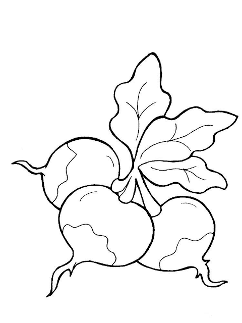 Gambar Mewarnai Sayur Lobak - 7