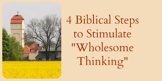 4 Biblical Steps to Stimulate Wholesome Thinking - 2 Peter 3:1-2