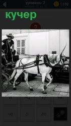 Белая лошадь тащит за собой повозку и кучера, который управляет процессом